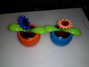 Solar Flowers